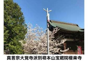 200529_chugai.jpg